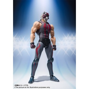 SH FIGUARTS TIGER THE DARK