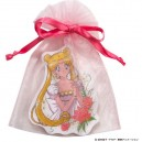 SAILOR MOON CARD DEAR PRINCESS